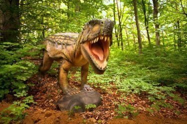 5. DinoParc Rasnov