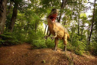 6. DinoParc rasnov